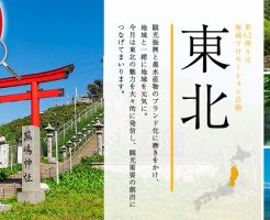 JAPANPROJECT1608