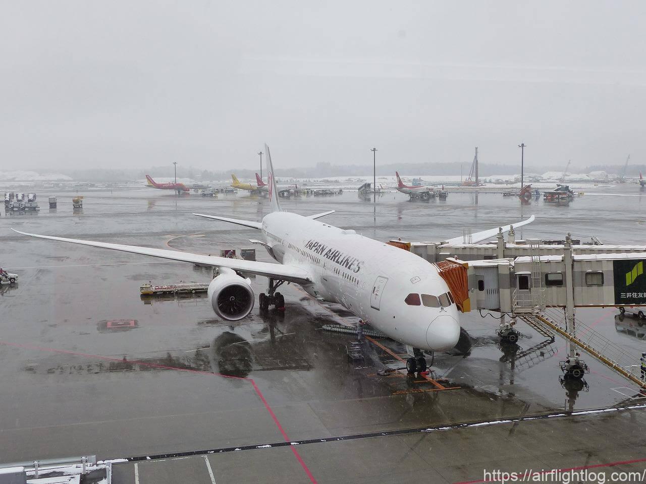 JAL成田空港機材